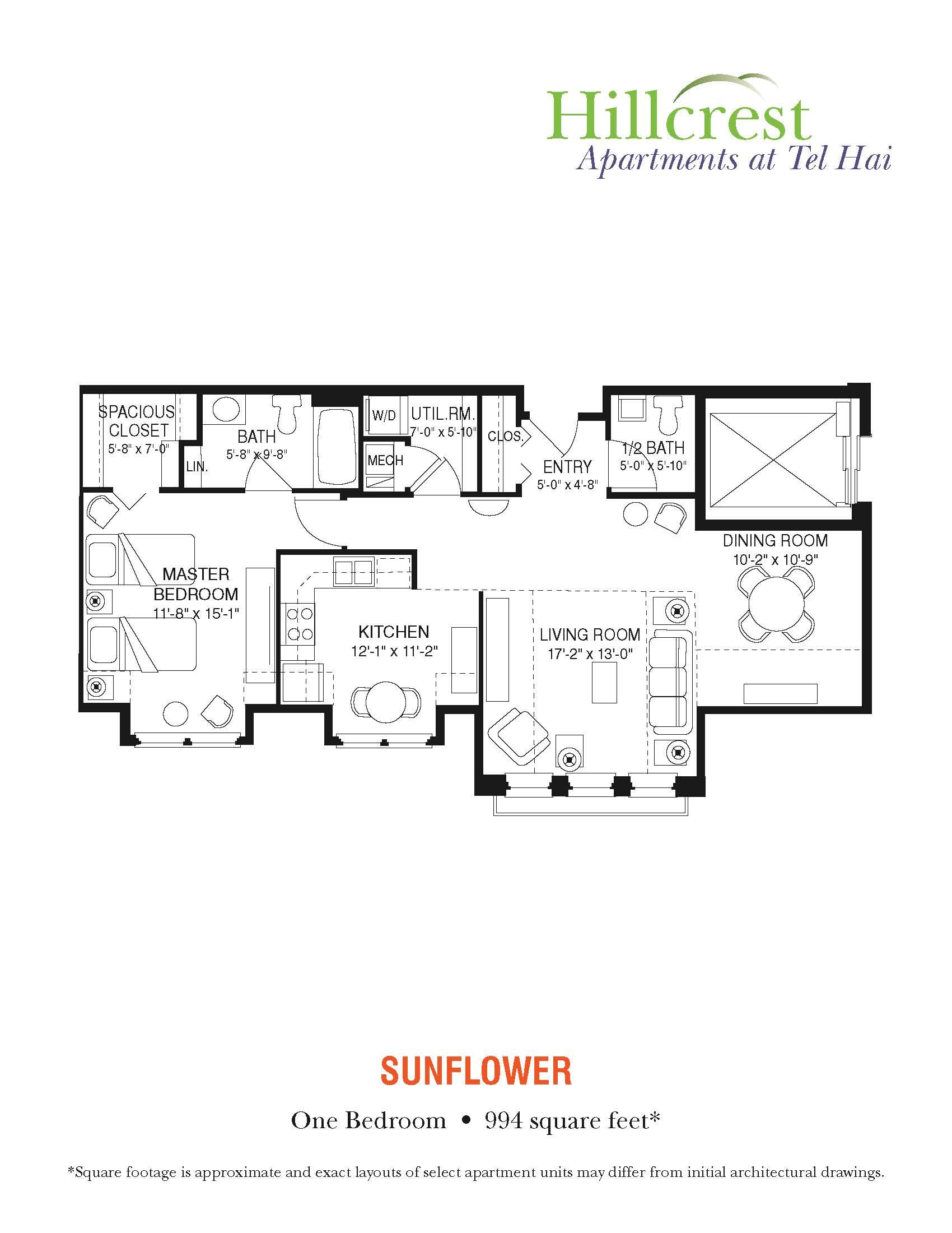 Sunflower Apartment at Tel Hai
