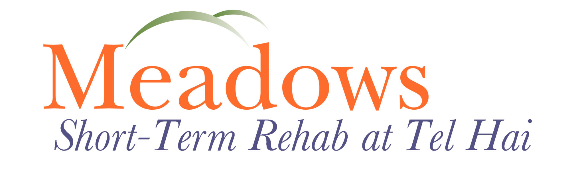 Meadows Short Term Rehab Services